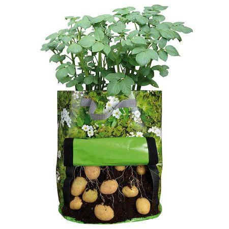 Zelená pěstírna brambor Ego Dekor Sam